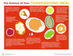 Thanksgiving Science! A great infographic-slash-worksheet about all the chemicals that appear in a typical Thanksgiving meal. #5thGrade #PhysicalScience #MiddleSchool