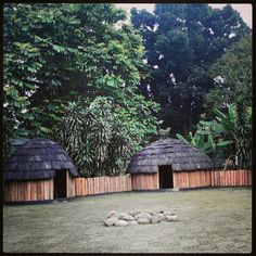 Traditional House of Papua