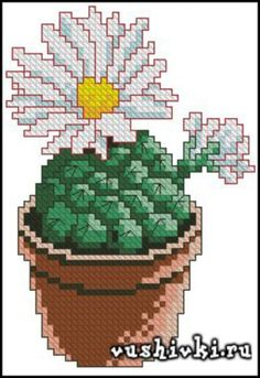 Gallery.ru / Фото #60 - ελευθε - ergoxeiro Cactus Embroidery, Embroidery Patterns, Hand Embroidery, Cactus Cross Stitch, Cross Stitch Flowers, Modern Cross Stitch Patterns, Cross Stitch Charts, Cross Stitching, Cross Stitch Embroidery