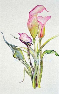 custom listing for jacqie Cala Lily Fine Art card by lizdezign