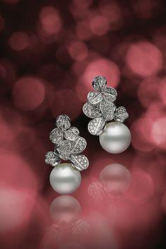 イアリング/WGK18製、白蝶真珠、ダイアモンド