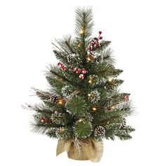 shop online for this elegant 24 inch snow tip pineberry tabletop tree artificial christmas - Small Artificial Christmas Tree