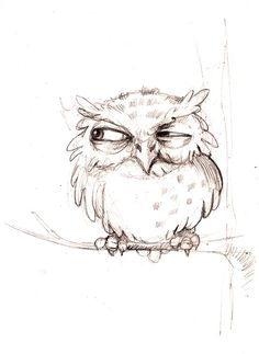 Marvelous Drawing Animals In The Zoo Ideas. Inconceivable Drawing Animals In The Zoo Ideas. Bird Drawings, Animal Drawings, Cute Drawings, Drawing Sketches, Drawing Owls, Drawing Animals, Sketches Of Birds, Sketches Of Animals, Owl Tattoo Drawings