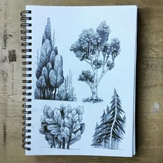 All I ever really want to do is draw trees. #sketch #sketchbook #trees
