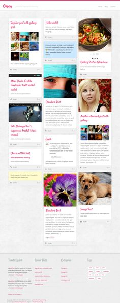 Clippy Wordpress Theme - Download it for free from Site5