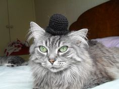 Charlie Chaplin Crocheted Bowler Hat For A Cat by SarabiRose, $8.50