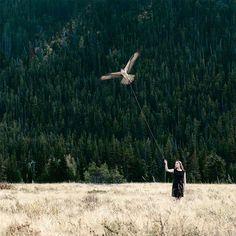 Philip Kanwischer Creates Surrealist Artworks To Show The Complex Relationship Between Wildlife And Humans – Design You Trust