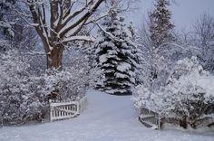 Image result for winter wonderland pictures