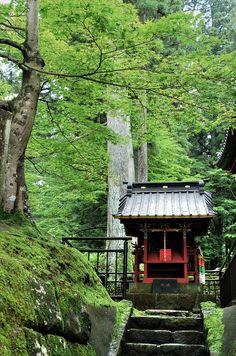Nikko-Japan 日本 Jul/2006 ©Freakland - フリークランド