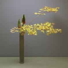 Ikebana of Soho Sensei