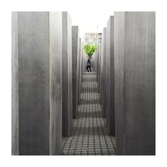 "Taken with an #iPhone6  Exploring #Berlin's Field of Stelae otherwise known as the ""Memorial to the Murdered Jews of Europe"" which was built 60 years after the atrocities of #WW2 #Germany by turkishdelight1996"