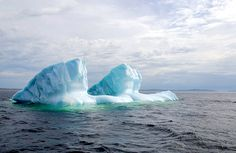 Icebergs glowing with a neon-like intensity off of Fogo Island