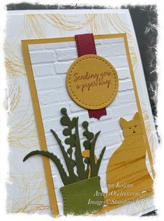 Savings Jar, What Cat, All Things Fabulous, Bird On Branch, Stamp Pad, Shaped Cards, Old Cats, Glue Dots, Oldies But Goodies