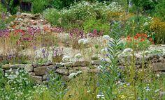 Hortus Insectorum: Ein Garten für Insekten