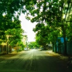 Summers. #Pune #Nature #Trees #Urban