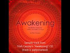 "Trish Causey's ""Awakening"" CD of Meditation Music Sample Track - http://www.TrishCausey.com ...///... #TrishCausey #artist #writer #composer #activist #YouTube #video #music #CD #awakening #recording #studio #tracks"