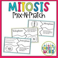 Mitosis by Lindsey's World High School Biology, Ap Biology, Middle School Science, Science Penguin, Cell Cycle, World Teachers, Physics And Mathematics, Mitosis, Science Notebooks