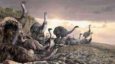 Velizar Simeonovski - Elephant Birds of Madagascar Extinct Birds, Extinct Animals, Prehistoric World, Prehistoric Creatures, Madagascar, Fauna, Fossils, Mammals, Reptiles