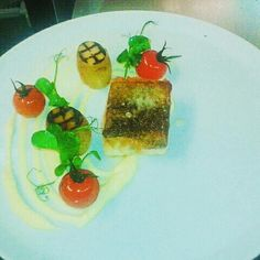 Fillet of cod braised  potatoes confit tomato coliflower pure and trufle oil