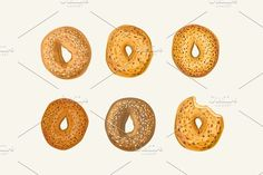 Hand drawn vector bagel set - Objects vector wheat drawing snack sketch set bread loaf meal roll food sign old seed toast rustic sweet whole product isolated background hand kitchen cake doodle baguette bagel croissant cooking baking flour draw bakery icon hand-drawn illustration sack brown breakfast bread isolated brick woodcut bun shape variety scone style basket color sliced shop slices steam white toasted rye pastries clipart ciabatta design grain life symbol tasty decorative bake…