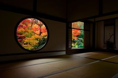 Autumn leaves and the beautiful visual phenomena of framing | JAPAN Monthly Web Magazine