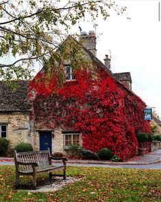 Places In England, England And Scotland, Climbers, Decoration, Wander, Facade, United Kingdom, Most Beautiful, Scene