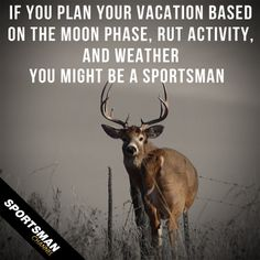 I've got a fever...and the only prescription is more deer hunting ;) MW