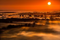 The Golden Hour - Phil Selby - Sunrise over the Vale of Pewsey Wiltshire. -  http://ift.tt/2cf82CK IFtemppicpinned in Building blocksdownld in ios #September 8 2016 at 02:27PM#via IF