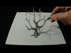 Art 3D Drawing Old Tree - How to Draw 3D Tree - YouTube