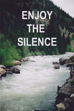 enjoy the silence; I know it's not a reference to the song, but oh well (: