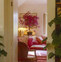 John stefanidis for the home pinterest bougainvillea for John stefanidis interior design