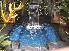 plunge outdoor pool with a waterfall you can probably DIY