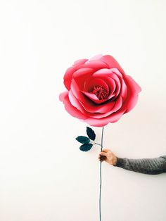 Giant Paper Flower  Giant Paper Rose  Large Steamed by MioPaperArt