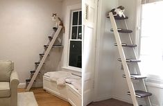 Need a way for your cat to climb but looking for an alternative to a traditional cat tree? Then check out this unique, customizable cat climber. Cat Climbing Shelves, Cat Climbing Tree, Cat Wall Shelves, Wood Shelf, Cat Wall Furniture, Modern Cat Furniture, Cat Climber, Cat House Diy, Diy Cat Tree