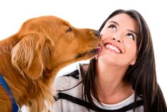 Los perros se comunican de distintas maneras dependiendo de lo que quieran decir. En este artículo explicamos el lengüetazo de un perro y sus secretos.