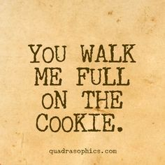 #denglish #geschenkartikel #quotes #sprüche #weiheiten #quadrat #humor #tweda #quadrasophics Du gehst mir tierisch auf den Keks