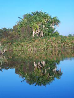 voyage, reflet, Botswana, Delta de l'Okavango