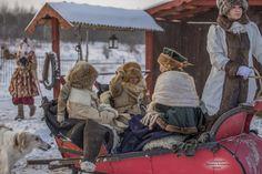 Русские традиции. Зимняя охота с борзыми собаками. Фото Тамара Антипина.