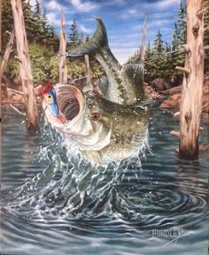 "Finished! Titled: ""Dude! That's a Bear!"" 16x20 in. Acrylic on Canvas. I was inspired to paint this from photos taken 2 years ago while on a Bass fishing trip to Shasta Lake CA with my brother Mark. I caught a similar Spotted Bass with this lure. The Bear may or may not have been there...  Thank you for following me on this journey, or for just looking in... I hope you found this Interesting, Educational and maybe Motivating as well!  http://artbycy.com/"