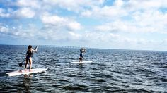 St. George Island best Paddleboard Lessons, Rentals, Eco-tours, and Excursions. Weekly Beach Yoga Classes. Private or Group Lessons, Family Fun and Adventures.