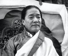 Refuge tree tibet lieux gens et coutumes pinterest for Miroir du dharma