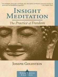 Insight Meditation - eBook
