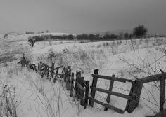 Fence by Martin Zeinelov