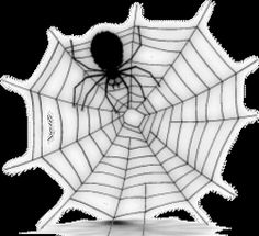 There is an art form to #spider web making. Some types of spiders go all out with their architecture of their webs. #HubPages