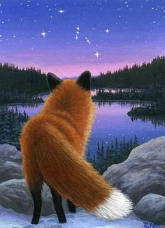 Red Fox wildlife evening lake Orion stars landscape limited edition aceo print  #Realism