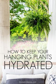 Learn how to make a wine bottle plant waterer to keep your hanging plants hydrated and your patio gorgeous this summer! Learn how to make a wine bottle plant waterer to keep your hanging plants hydrated and your patio gorgeous this summer! Hanging Ferns, Hanging Plants Outdoor, Indoor Outdoor, Plants Indoor, Hanging Baskets, Potted Plants, Outdoor Flowers, Outdoor Fabric, Gardening For Beginners