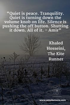 """""""Quiet is peace. Tranquility. Quiet is turning down the volume knob on life. Silence is pushing the off button. Shutting it down. All of it. - Amir"""" Khaled Hosseini, The Kite Runner"""