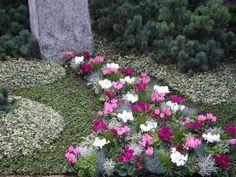 Bildergebnis für grabbepflanzung im herbst Cc Images, Stepping Stones, Outdoor Decor, Flowers, Gardens, Plants, Lawn And Garden, Dekoration, Stair Risers