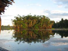 Island #Amazonas #Peru