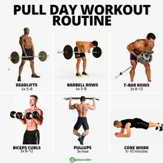The Best Workouts Programs: Personal Training For Fitness Junkies Pull Day Workout, Gym Workout Tips, Easy Workouts, Street Workout, Weight Training Workouts, Muscle Building Workouts, Workout Programs, Fitness Motivation, Nutrition